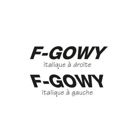 Texte Avion italique